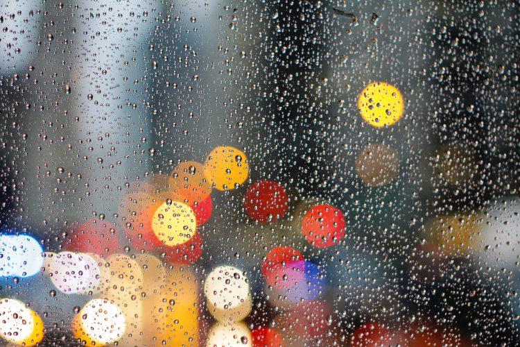 雨の影響受けた光景