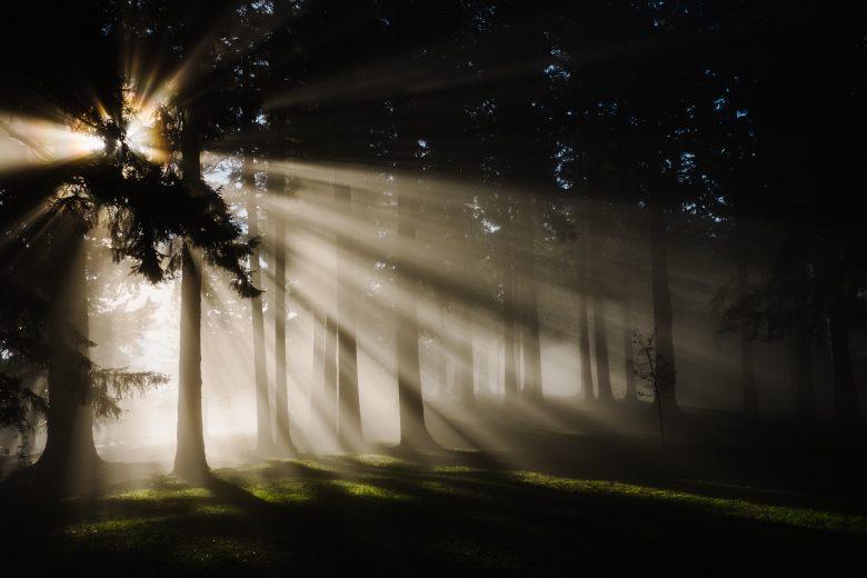 暗闇から差し込んだ光